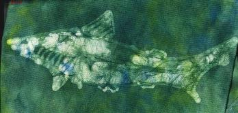 scanned detail of dogfish shark batik on cotton knit material